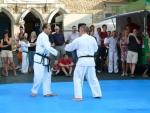 25-Jahre-Taekwondo-Gala (107).jpg