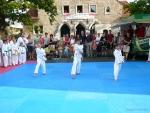 25-Jahre-Taekwondo-Gala (26).jpg