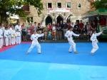 25-Jahre-Taekwondo-Gala (27).jpg