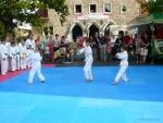 25-Jahre-Taekwondo-Gala (28).jpg
