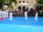 25-Jahre-Taekwondo-Gala (29).jpg