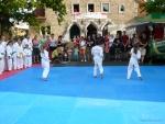 25-Jahre-Taekwondo-Gala (30).jpg
