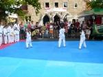 25-Jahre-Taekwondo-Gala (31).jpg