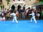 25-Jahre-Taekwondo-Gala (33).jpg