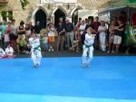 25-Jahre-Taekwondo-Gala (34).jpg