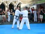 25-Jahre-Taekwondo-Gala (108).jpg