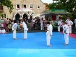 25-Jahre-Taekwondo-Gala (35).jpg