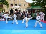 25-Jahre-Taekwondo-Gala (36).jpg
