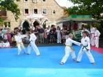 25-Jahre-Taekwondo-Gala (37).jpg