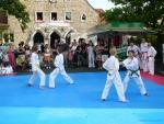 25-Jahre-Taekwondo-Gala (38).jpg