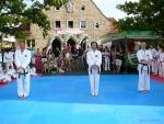 25-Jahre-Taekwondo-Gala (39).jpg