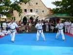 25-Jahre-Taekwondo-Gala (40).jpg