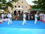 25-Jahre-Taekwondo-Gala (41).jpg
