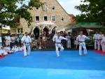 25-Jahre-Taekwondo-Gala (43).jpg