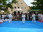 25-Jahre-Taekwondo-Gala (44).jpg