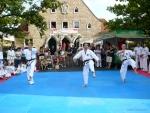 25-Jahre-Taekwondo-Gala (45).jpg