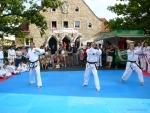 25-Jahre-Taekwondo-Gala (46).jpg