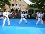 25-Jahre-Taekwondo-Gala (47).jpg