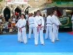 25-Jahre-Taekwondo-Gala (49).jpg