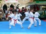 25-Jahre-Taekwondo-Gala (50).jpg