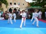 25-Jahre-Taekwondo-Gala (51).jpg