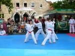 25-Jahre-Taekwondo-Gala (52).jpg