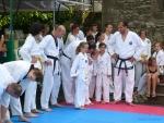 25-Jahre-Taekwondo-Gala (11).jpg