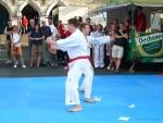 25-Jahre-Taekwondo-Gala (54).jpg