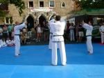 25-Jahre-Taekwondo-Gala (55).jpg