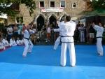 25-Jahre-Taekwondo-Gala (56).jpg