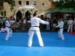 25-Jahre-Taekwondo-Gala (57).jpg