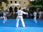 25-Jahre-Taekwondo-Gala (58).jpg