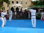 25-Jahre-Taekwondo-Gala (59).jpg