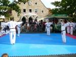25-Jahre-Taekwondo-Gala (60).jpg