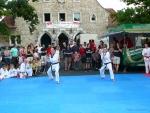 25-Jahre-Taekwondo-Gala (61).jpg