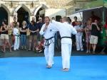 25-Jahre-Taekwondo-Gala (110).jpg