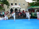 25-Jahre-Taekwondo-Gala (62).jpg