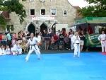 25-Jahre-Taekwondo-Gala (63).jpg