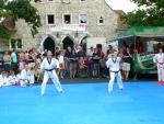 25-Jahre-Taekwondo-Gala (64).jpg