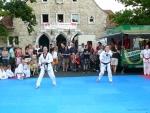 25-Jahre-Taekwondo-Gala (65).jpg