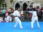 25-Jahre-Taekwondo-Gala (67).jpg