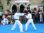 25-Jahre-Taekwondo-Gala (69).jpg