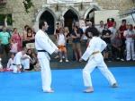 25-Jahre-Taekwondo-Gala (70).jpg