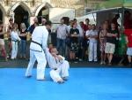 25-Jahre-Taekwondo-Gala (111).jpg