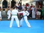 25-Jahre-Taekwondo-Gala (71).jpg