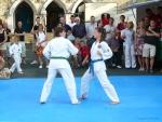 25-Jahre-Taekwondo-Gala (72).jpg