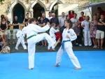25-Jahre-Taekwondo-Gala (73).jpg