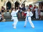 25-Jahre-Taekwondo-Gala (74).jpg