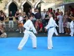 25-Jahre-Taekwondo-Gala (75).jpg
