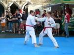 25-Jahre-Taekwondo-Gala (77).jpg